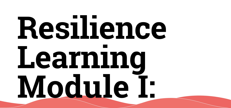 Resilience Learning Module: Localizing the Sendai Framework for DRR